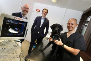 MEDIVET GROUP SET TO BUILD NORTH EAST PRESENCE AFTER ACQUISITION OF WASHINGTON'S DRAGON VETERINARY CENTRE